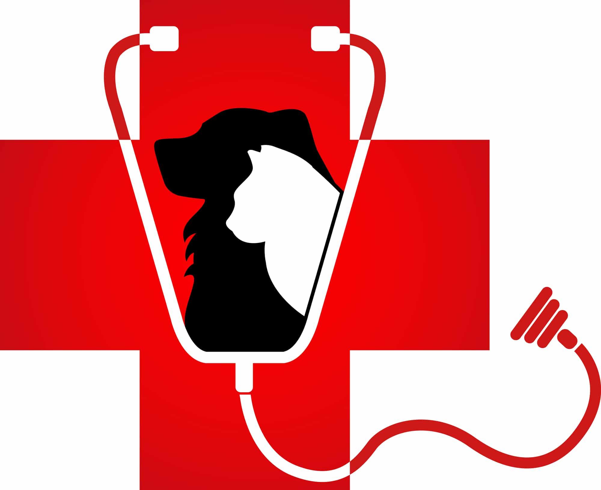Emergency Pet Clinic